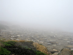 California Coast 4
