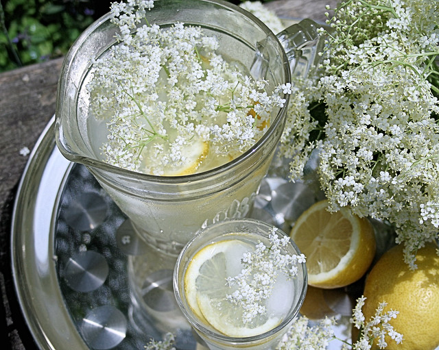 Old Fashioned English Elderflower Cordial