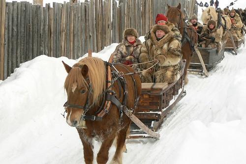 Horse sleds at Rørosmartnan