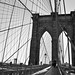 brooklyn bridge cables by crushgruve