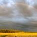 Rainbow Panorama (HDR) by iPhone Farmer