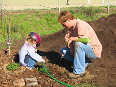 agriculture, farm, sowing, garden, soil,