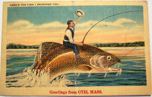 Vintage Postcard - Greetings from Otis, Mass