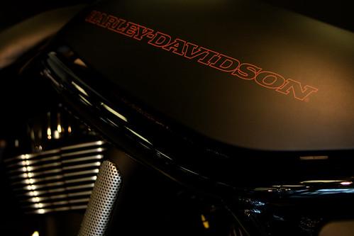 Harley Davidson 030