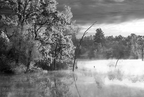 mist lake water sunrise spring pentax may calif reservoir shenandoah eldoradocounty 2011 dagostini k10d pentaxk10d pentaxart copyrightrichardbeebe copyrightricharddbeebe richardbeebe rbeebe