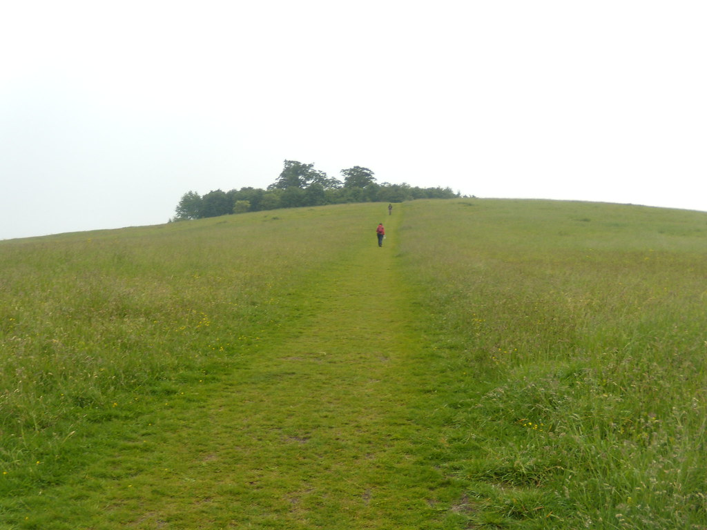 Up to Wittenham clumps Appleford Circular