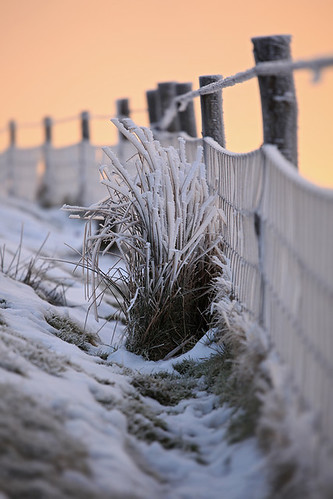 snow cold ice grass sunrise fence frozen frost peakdistrict freezing f4 200mm canonef70200mmf4lisusm