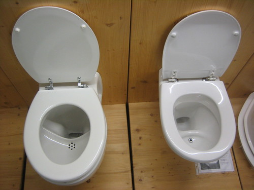 Urine-diversion flush toilets by Sustainable sanitation