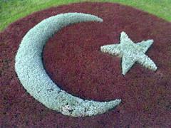 Türkiye  TK SOLIDARITAS CATASTROFA AVION TURK Amsterdam TK