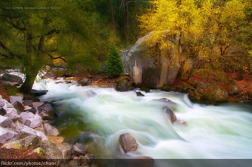 Tenaya Creek, Yosemite National Park (#272)