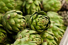 asterales(0.0), thistle(0.0), plant(0.0), nopal(0.0), vegetable(1.0), flower(1.0), artichoke(1.0), green(1.0), produce(1.0), food(1.0), artichoke thistle(1.0),
