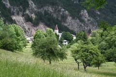 Puchberg am Schneeberg 7.6.2009