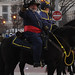 History on a Horse - Washington DC, USA