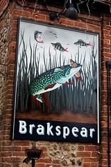 Oxfordshire Pub Signs