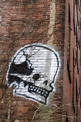 Bookman Graffiti, DUMBO, Brooklyn