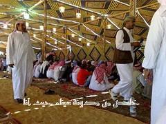 مؤتمر قبائل وعشائر سيناء بوادي العمر سيناء 6