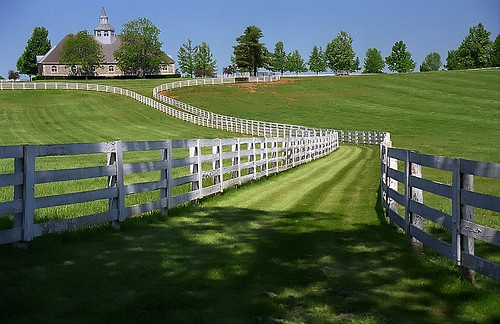 Lexington, Kentucky - Donamire Farm