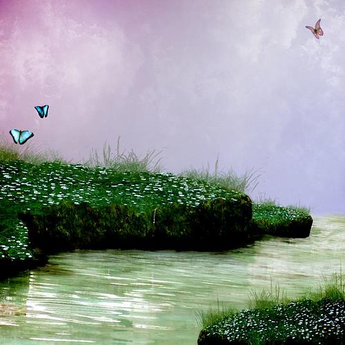 photo background