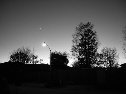 christmas winter light sunset blackandwhite holiday evening louisiana