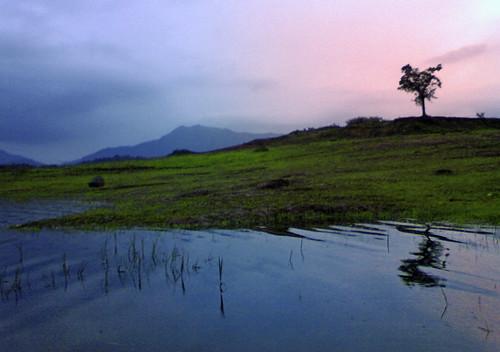 Karappuzha Dam, Wayanad on a fine Sunday Evening!