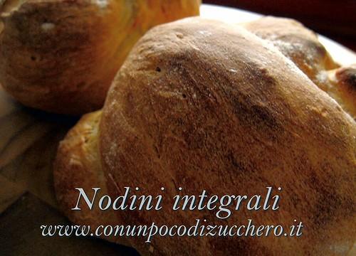 Nodini integrali