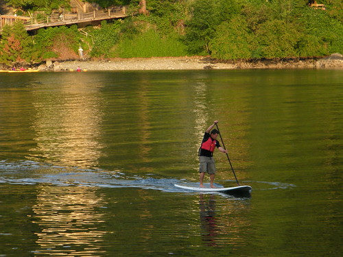 Stand-up Paddle Boarding - Deep Cove