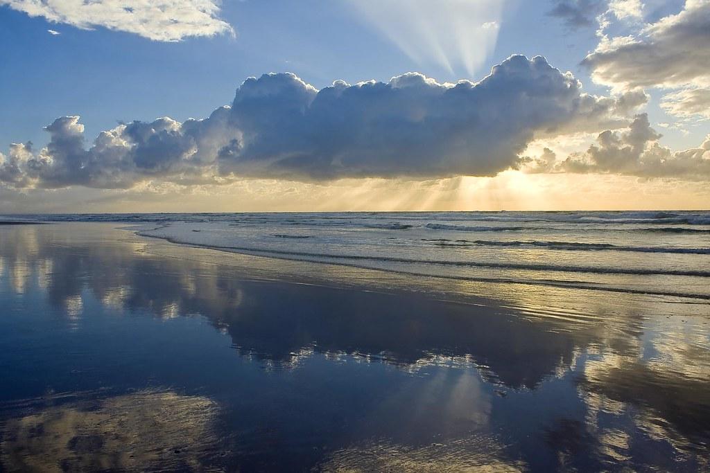 フレーザー島の画像 p1_11