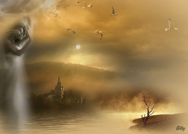 Fairy of daybreak