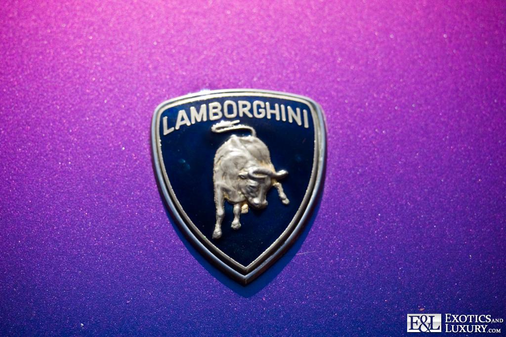 Lamborghini Logo Emblem Badge Flickr Photo Sharing