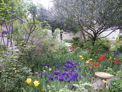The Jane Street Garden by BDC_Lancaster, on Flickr