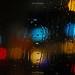 Wild Rain by Anup Aich