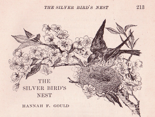 The Silver Bird's Nest