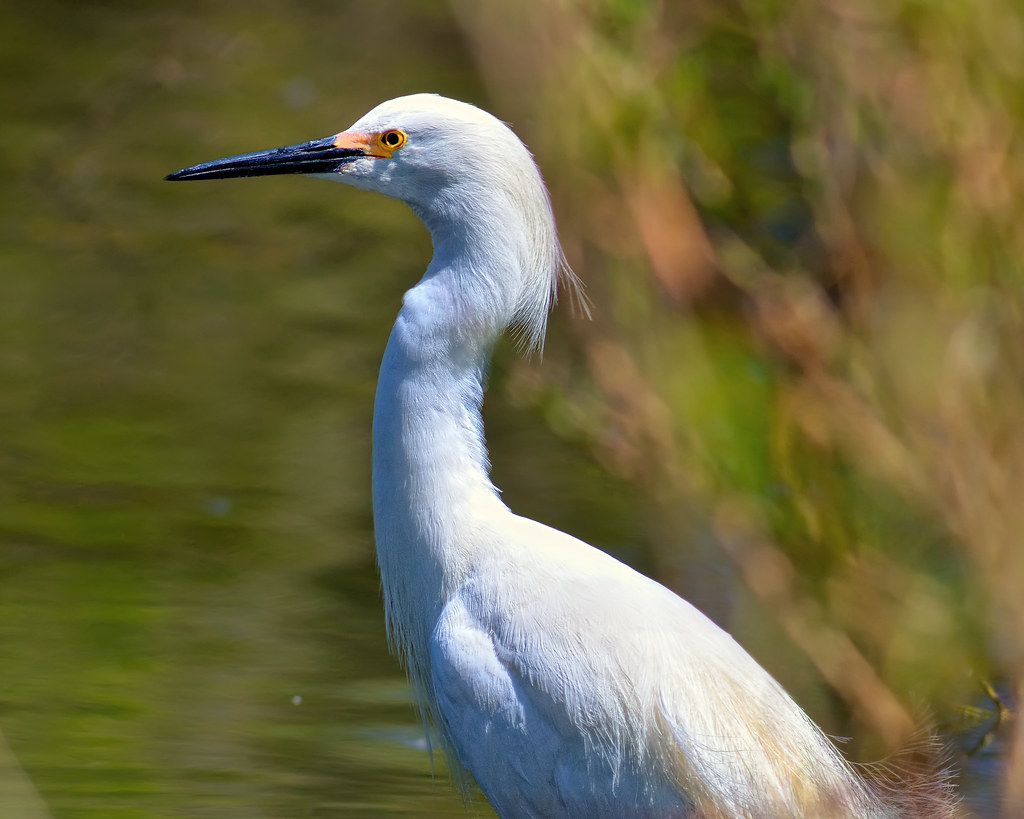 Roller skating rink greeley colorado