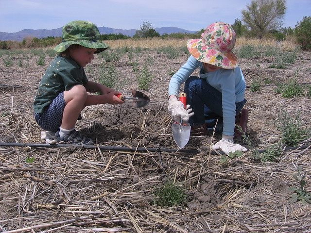 Children planting on the Desert National Wildlife Refuge in Nevada