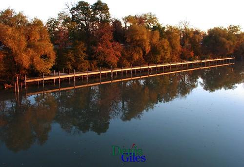 trees sunset ontario canada reflection nature thames canon river outdoors dock chatham boardwalk powershots3 denisgiles