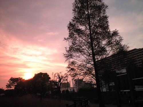 tokyo sunset1