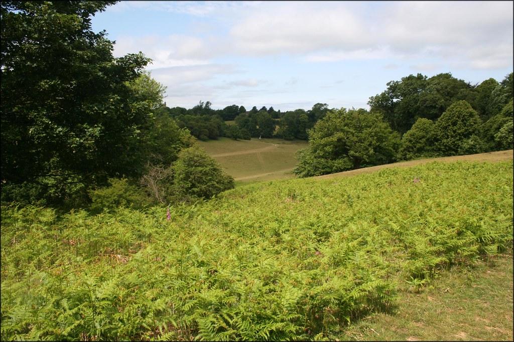 Knole Park Sevenoaks, Kent