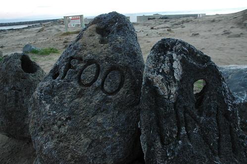 Foo, a great variable name, Mavericks Beach, California, USA by Wonderlane