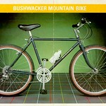 Bushwacker mountain bike