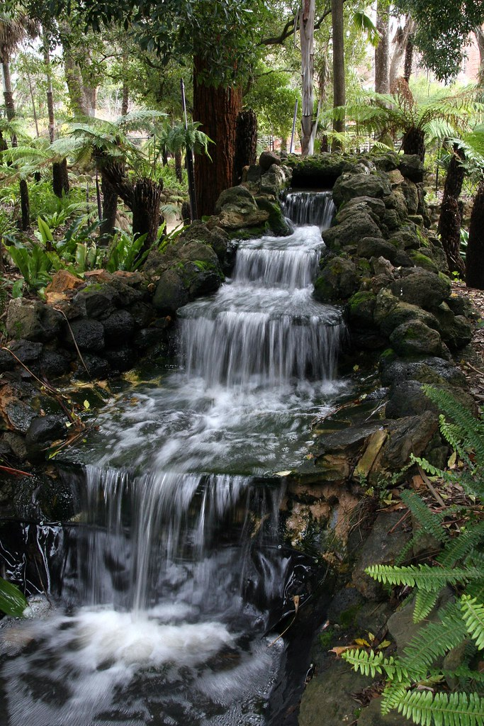 Waterfall - The Fernery