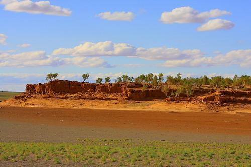 cliff desert south mongolia gobi bayanzag saxaul mongolianbeauty umnugovi amarbat