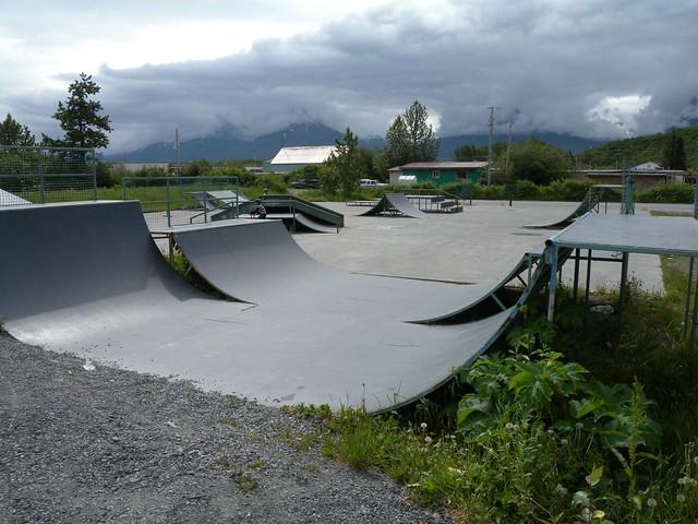 Header of Alaska Skate