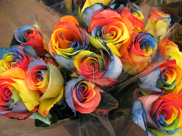 Photo for How to make multi colored flowers