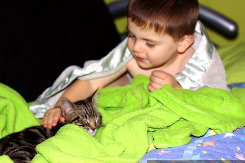 reassuring the kitten during our blackout    MG 5616