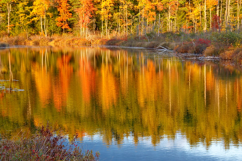Fall colors at Holt Pond