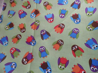 These owls just arrived for placemat