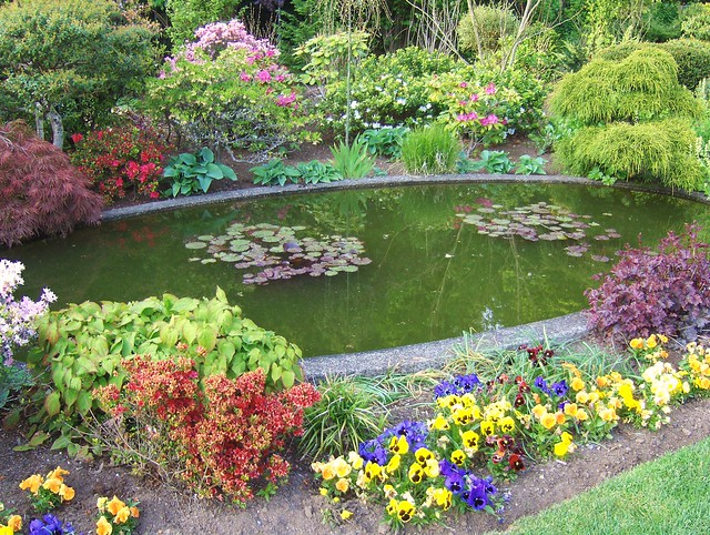 GARDEN PONDS a gallery on Flickr