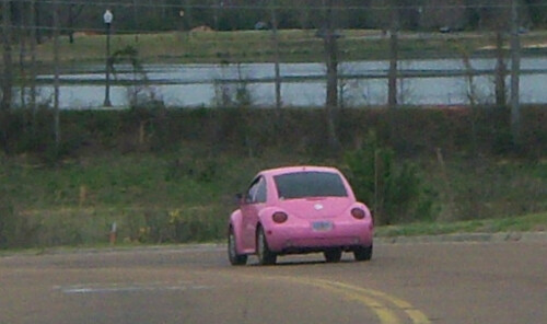 Hot Pink Slug Bugs http://kootation.com/hot-pink-punch-buggy-vw-bug.html