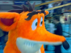 pet(0.0), goldfish(0.0), orange(1.0), plush(1.0), stuffed toy(1.0), mascot(1.0), toy(1.0),