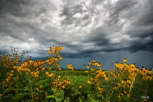 flowers rain clouds canon kansas thunderstorm storms hdr